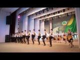 Ансамбль танца и народной музыки Виорика