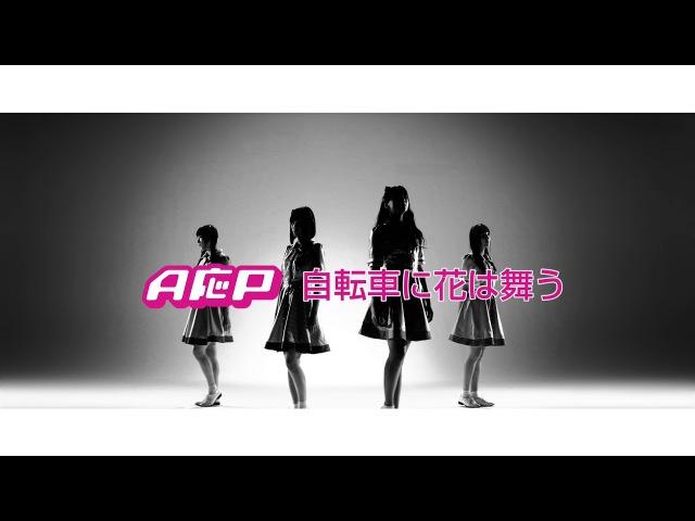 【MV】A応P「自転車に花は舞う」Short Ver.