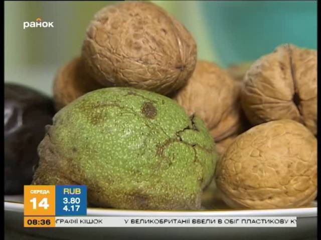 Чем отмыть руки от орехов: эксперимент Утра - Интер