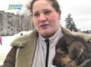 День счастливой собаки в Конаково