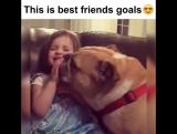 Лучший друг.