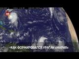 NASA показало видео формирования смертоносного урагана «Мария»