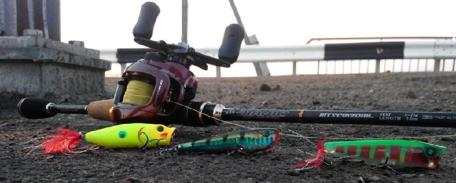 рыбалка на попперы