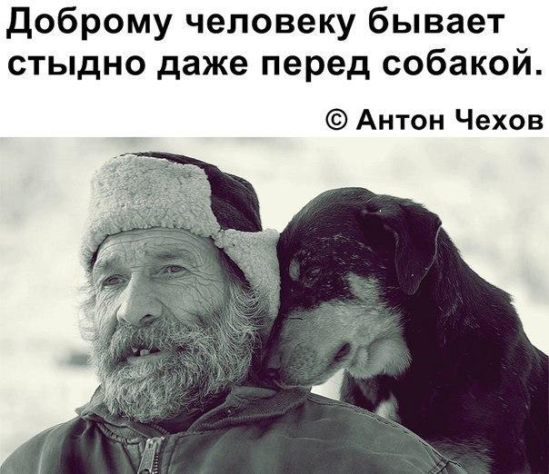 Фото №456248504 со страницы Ильмира Резбаева