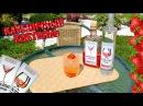Клубничный коктейль Эссенции для алкоголя MOMIXBAR