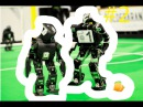 Смешная озвучка жизнь роботов смешная нарезка лучших видео BostonDynamics 2