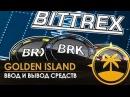 Как ввести и вывести деньги на бирже Bittrex