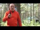 Вадим Старов метание камней ножей Подготовительные упражнения на точность и ...