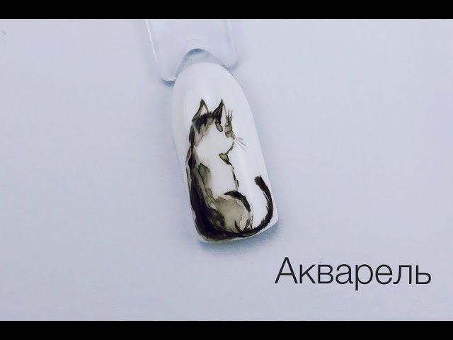 Кошка (акварель). МК от Луизы Копыловой