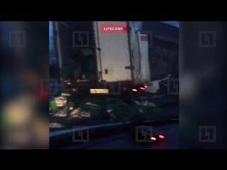 Двое водителей погибли при столкновении фур в Ленобласти