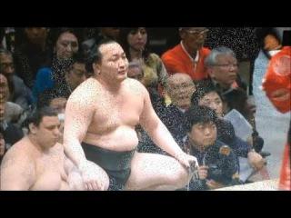 Sumo -Hatsu Basho 2017 Day 7, January 14th -大相撲初場所 2017年 7日目