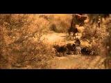 O Little Town of Bethlehem (Instrumental)