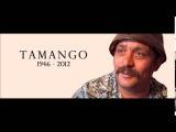 Hara &amp Tamango - Muro Shavo ( Dj Vlad Remix )