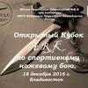 Открытый Кубок A.R.K. по СНБ.