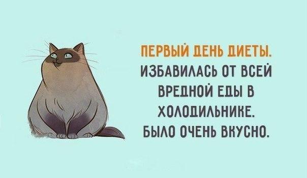 https://pp.vk.me/c836536/v836536417/12a91/ks3C0IaB9yY.jpg