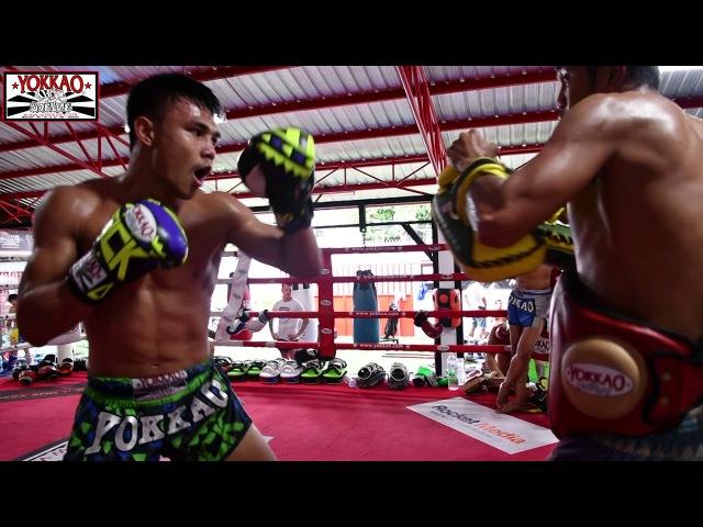 Муай Тай - YOKKAO тренировка в Бангкоке, Таиланд