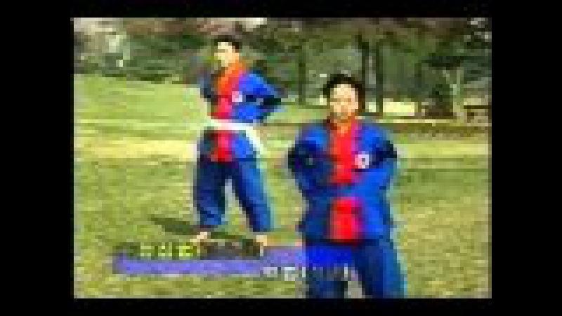 Kouk sun do Jung Ki Dan Boub postures