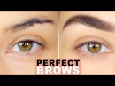 How To Perfect Natural Brows Eyebrow Tutorial How to Groom Eyebrows Eman