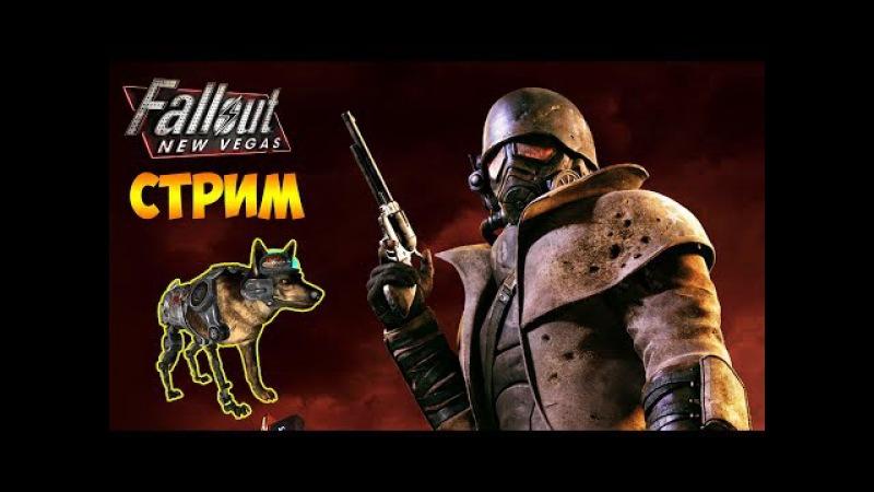 ЗАДАНИЯ В УБЕЖИЩЕ 22. РАСТЕНИЯ И НАСЕКОМЫЕ - Fallout: New Vegas (стрим) 2