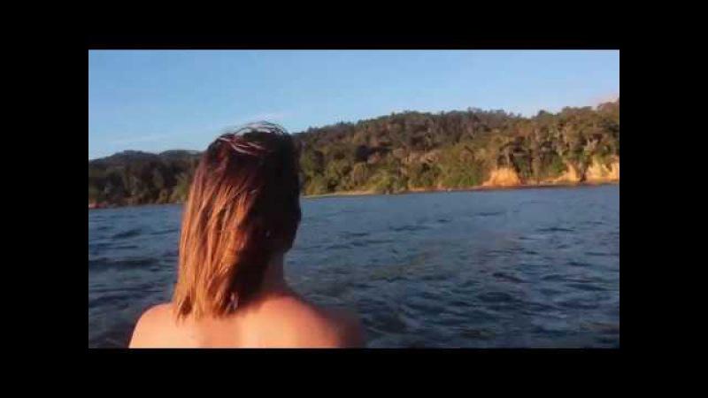 Golden Retriever - Pelagic Tremor (Official Music Video)