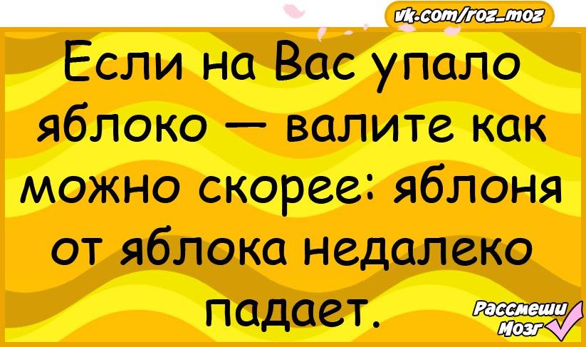 B53Yan1Yq2o.jpg
