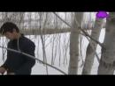 ИНТИЗОРИ РУЗИ НЕК - ТОЧИКФИЛМ 2017