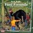 Fünf Freunde - 040 - und das verschwundene Pferd (Teil 19)