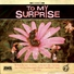 To My Surprise - This Life