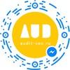 Audit-Seo.Ru