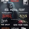 22 апреля BIG METAL FEST в клубе Звезда.