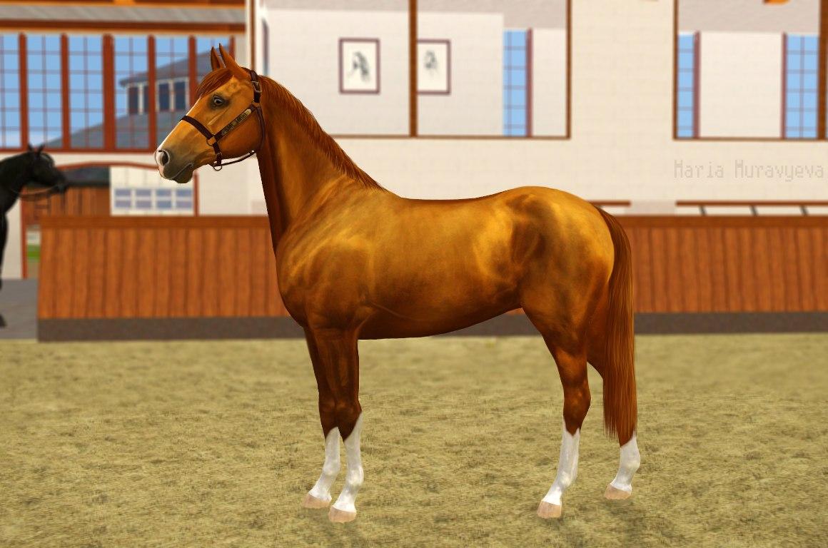Регистрация лошадей в RHF 2 - Страница 3 F6LDDVhI8dE