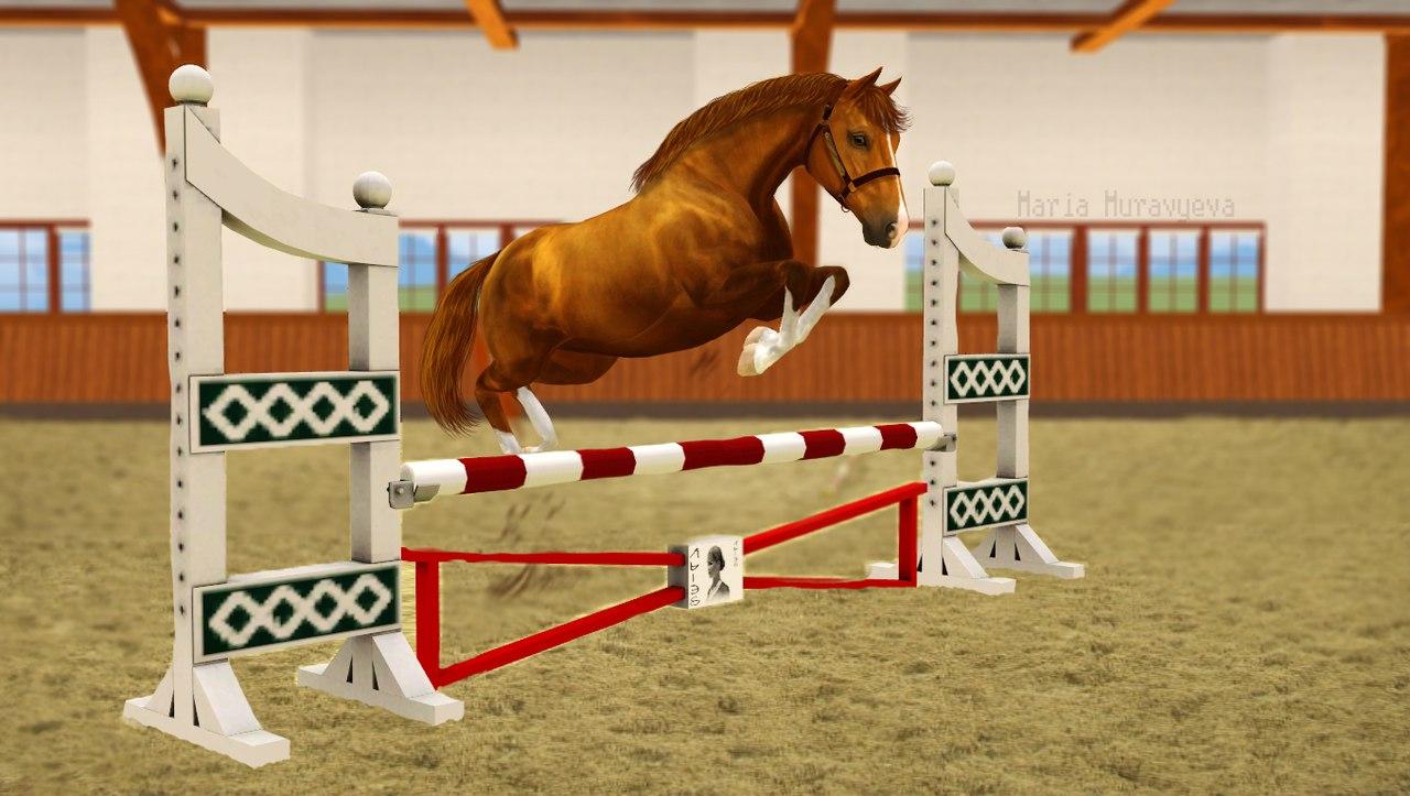 Регистрация лошадей в RHF 2 - Страница 3 C_7BRdrTasc