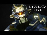 Halo 5 LIVE all Official Shorts