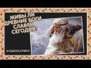 В поиске ответа. Живы ли древние боги славян сегодня?
