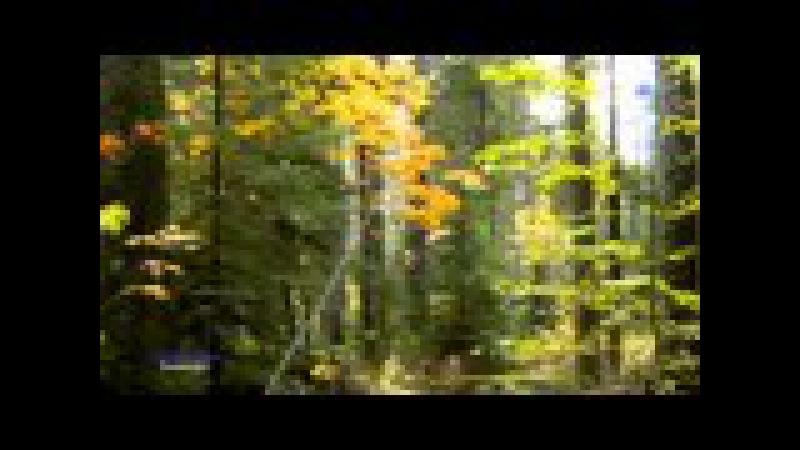 SECRET GARDEN - Passacaglia (amazing instrumental music )