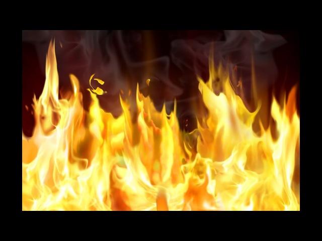 Американские ученые предрекли человечеству смертельную жару.