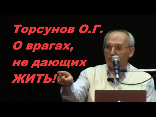 Торсунов О.Г. О врагах, не дающих ЖИТЬ!