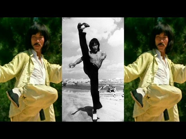 Martial Arts Kung Fu Movies Action Star Taekwondo Master Kicker Hwang Jang Lee