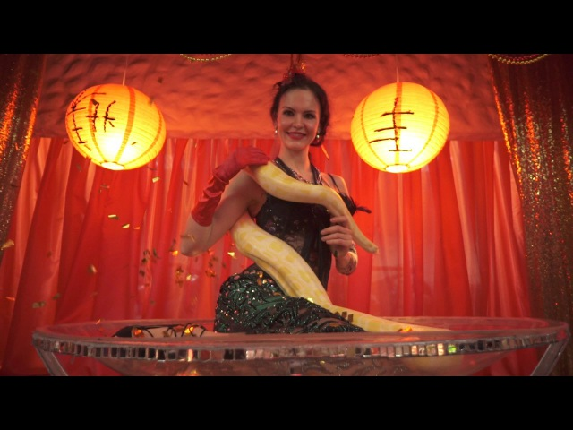 SUPERB Snakecharmer Burlesque Welcome Martini Glass Велком с питоном Самара Танец со змеей