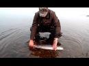 Рыбалка в Сибири,Тайменьподарок уходящего лета,спасибо тебе река!