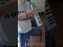 ( 02\0116 ) Духовая мелодика ( Духовое Пианино ) Maxtone