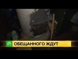 Питерские чиновники не обращают внимания на коммунальный кошмар в Лисьем Носу