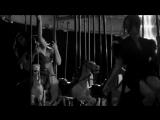 Love, Ecstasy and Terror - Carousel