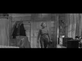 Сами собой в штабеля укладываются! Девчата. 1961 г.