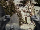 Прогулки с монстрами. Жизнь до динозавров 2005