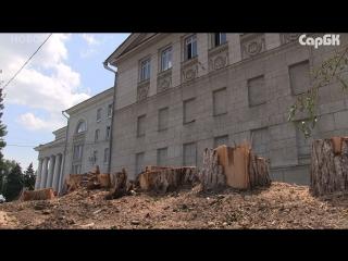 У театра оперы и балета спилили деревья