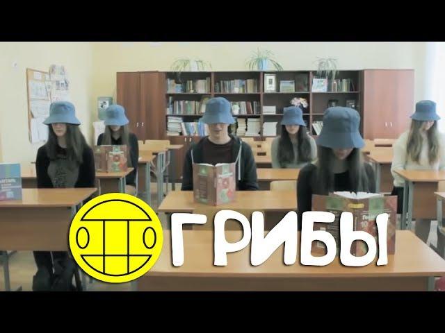 ШКОЛЬНИКИ ПЕРЕПЕЛИ ГРУППУ ГРИБЫ - ТАЕТ ЛЕД! ПАРОДИЯ! 11 КЛАСС!