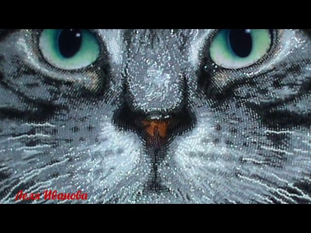 Вышивка бисером. СП В мире животных-2017. Базальт. Отчет № 5. Окончание работы.