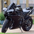 Moto Life фото #50