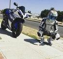 Moto Life фото #47